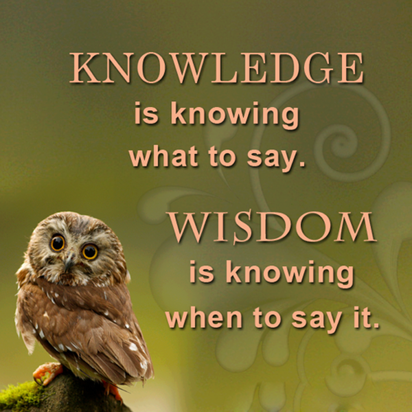 Citaten Over Uilen : Inspirational wisdom quotes sayings pictures picsmine